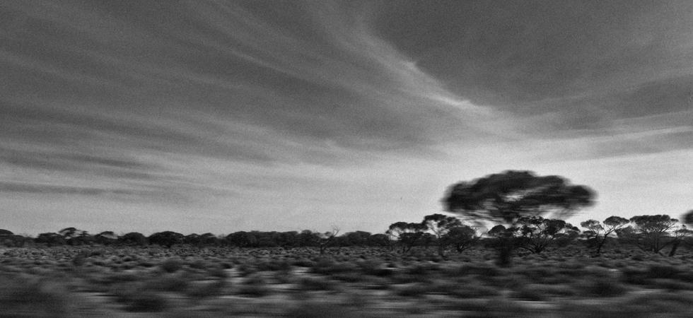 Vish - Australia
